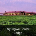 Nyungwe Forest Lodge (Interior)